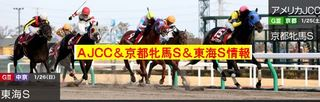 AJCC2014-1.JPG